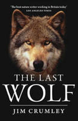 Picture of The Last Wolf