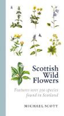 Picture of Scottish Wild Flowers