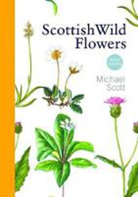 Picture of Scottish Wild Flowers: Mini Guide