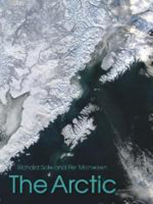 Picture of The Arctic