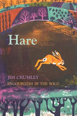 Picture of Hare
