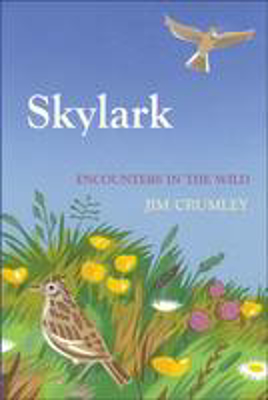 Picture of Skylark