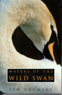 Picture of Waters of the Wild Swan