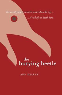 Picture of The Burying Beetle