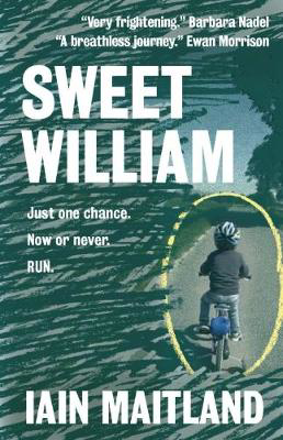 Picture of Sweet William