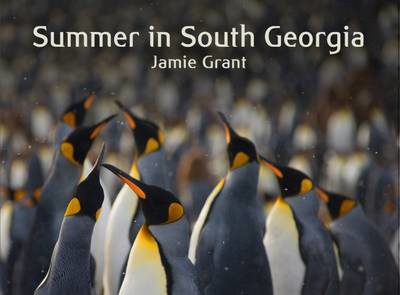 Picture of Summer in South Georgia