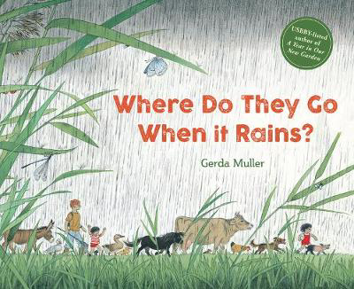Picture of Where Do They Go When It Rains?