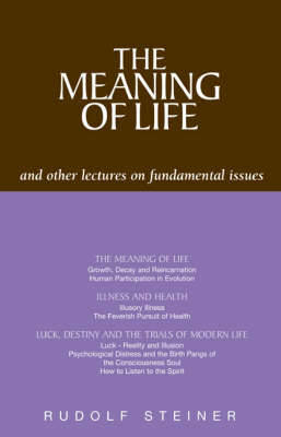 Picture of The Meaning of Life and Other Lectures on Fundamental Issues