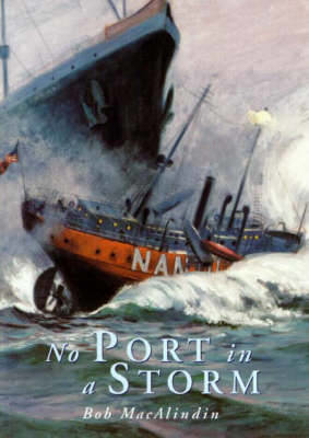 Picture of No Port in a Storm