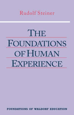 Picture of The Foundations of Human Experience