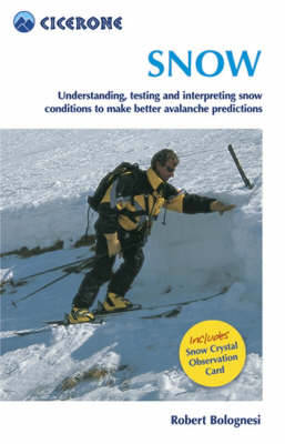Picture of Snow: Understanding, testing and interpreting snow conditions to make better avalanche predictions