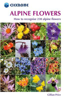 Picture of Alpine Flowers: How to recognise 230 alpine flowers