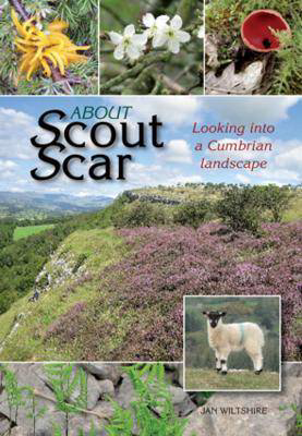 Picture of About Scout Scar: Looking into a Cumbrian Landscape