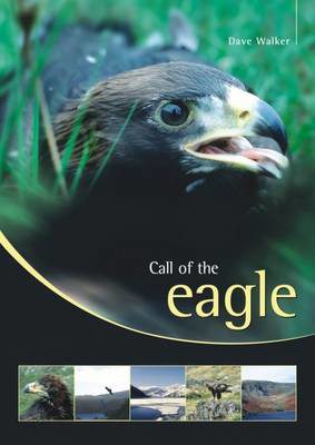 Picture of Call of the Eagle