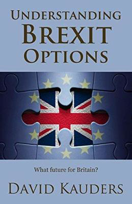 Picture of Understanding Brexit Options: What future for Britain?