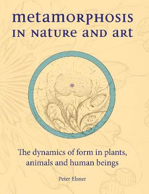 Picture of Metamorphosis in Nature and Art: The Dynamics of Form in Plants, Animals and Human Beings