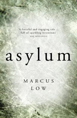 "Picture of Asylum: ""the most credible - and therefore the most disturbing - dystopian novel I have ever read""- SUNDAY TIMES"