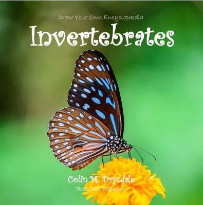 Picture of Draw Your Own Encyclopaedia Invertebrates