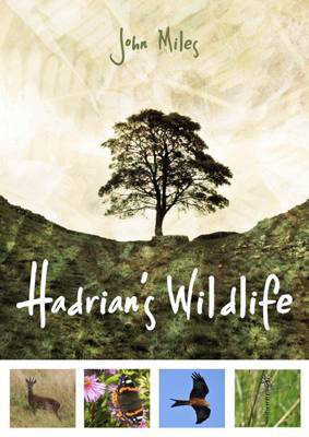 Picture of Hadrian's Wildlife