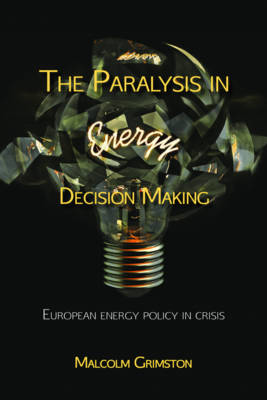 Picture of The Paralysis in Energy Decision Making