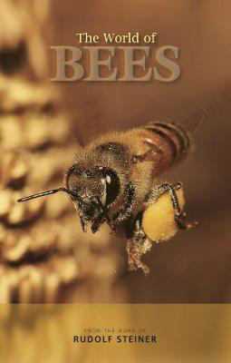 Picture of The World of Bees