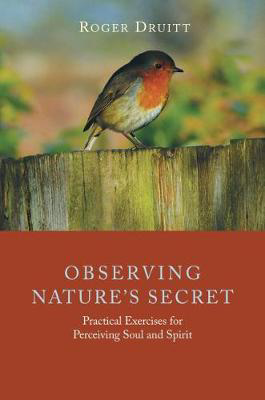 Picture of Observing Nature's Secret: Practical Exercises for Perceiving Soul and Spirit