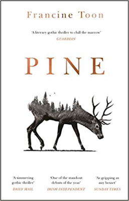 Picture of Pine