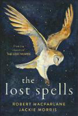 Picture of The Lost Spells