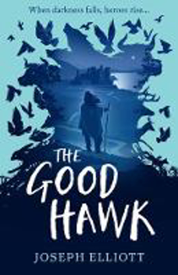 Picture of The Good Hawk (Shadow Skye, Book One)