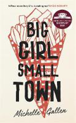 Picture of Big Girl, Small Town: Shortlisted for the Costa First Novel Award