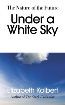 Picture of Under a White Sky: The Nature of the Future