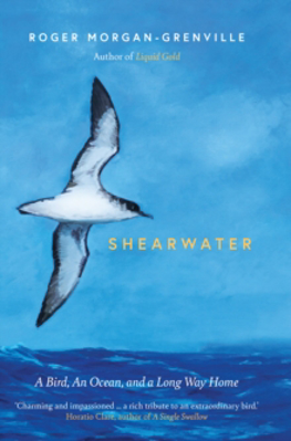 Picture of Shearwater: A Bird, an Ocean, and a Long Way Home