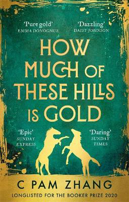 Picture of How Much of These Hills is Gold: Longlisted for the Booker Prize 2020