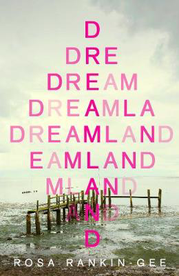 Picture of Dreamland: The summer's most 'dazzling and shattering' new novel