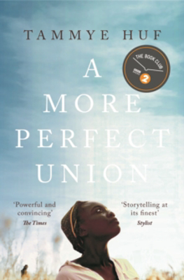 Picture of A More Perfect Union