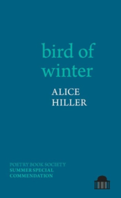 Picture of bird of winter