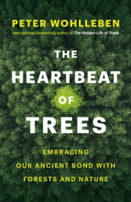 Picture of The Heartbeat of Trees: Embracing Our Ancient Bond with Forests and Nature