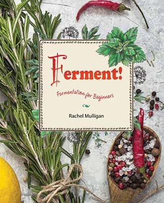 Picture of Ferment!: Fermentation for Beginners