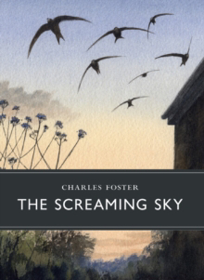 Picture of The Screaming Sky