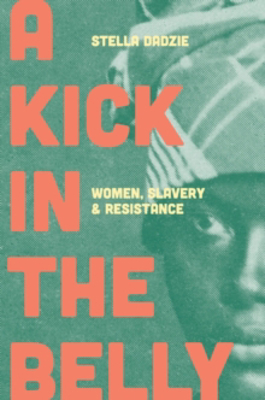 Picture of A Kick in the Belly: Women, Slavery and Resistance